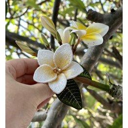 Как изготовить цветок Плюмерия ФСЛ