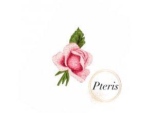 Бутон розы. Бесплатный дизайн