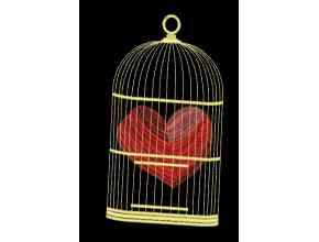 A heart in a cage